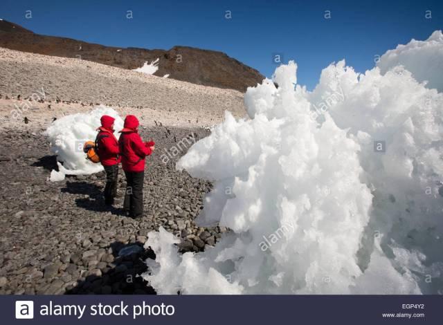 12antarctica-weddell-sea-paulet-island-tourists-viewing-adelie-penguins-EGP4Y2